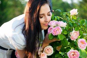 Der Garten als Aroma-Oase