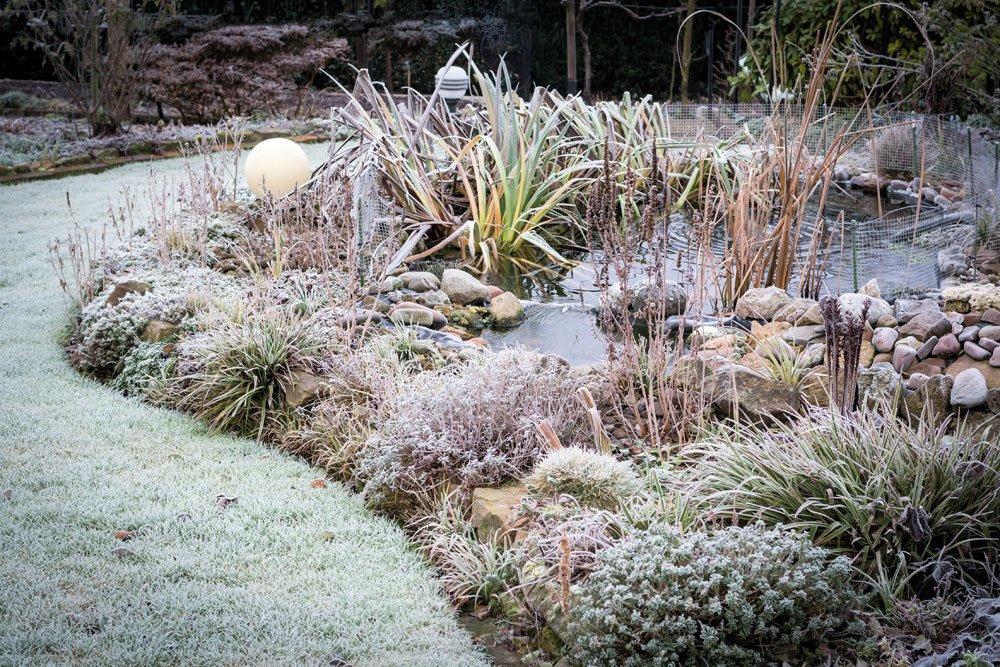 design#5001517: gartentipps winter beachten – gartentipps für den, Garten und erstellen