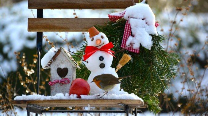 Der garten im winter ein kleiner ratgeber - Ein kleiner garten ...