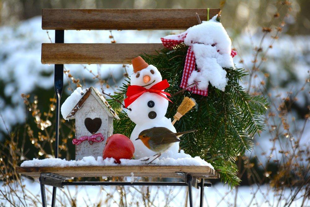 Der Garten Im Winter - Ein Kleiner Ratgeber Gartnern Im Herbst Den Garten Fur Die Wintertagen Vorbereiten