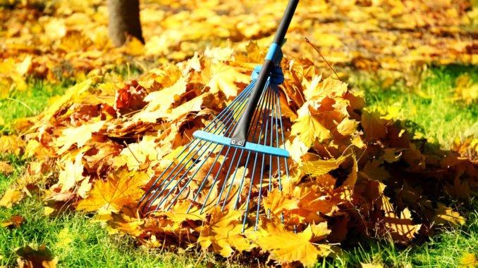 Herbstarbeiten