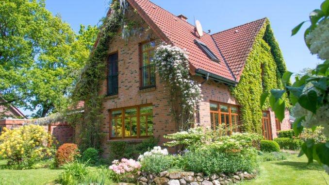 Optik und Klima des Hauses mit Kletter- und Schlingpflanzen bereichern