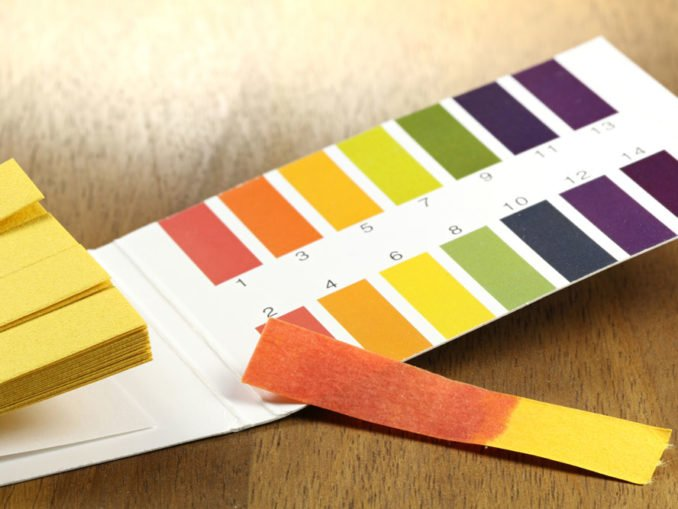 pH-Wert im Boden messen