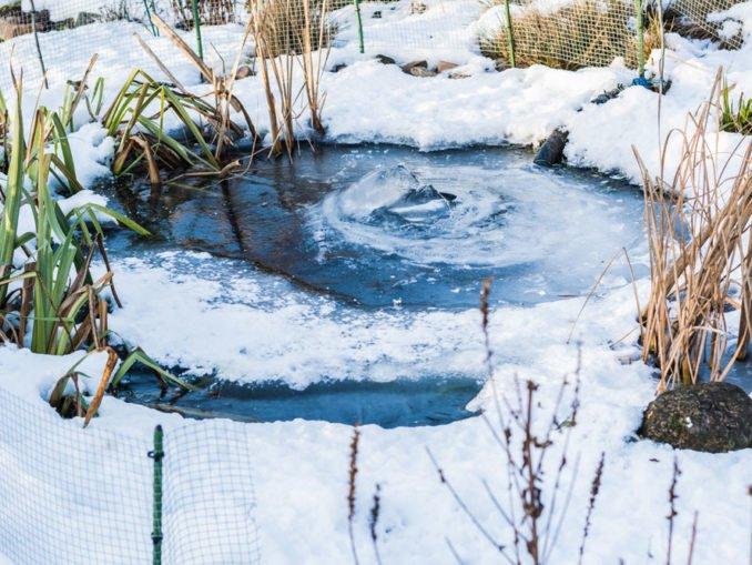 Gartenteich im Winter