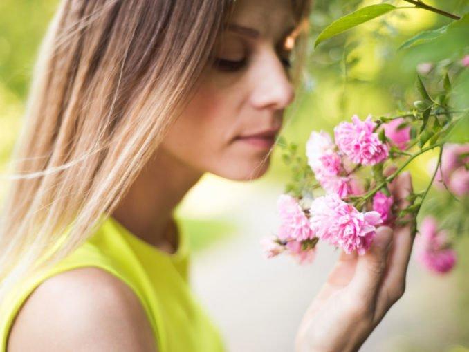 Garten Duft Aroma