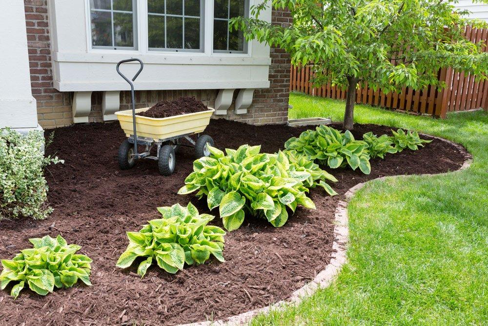 Bodenpflege - der Mulch macht\'s