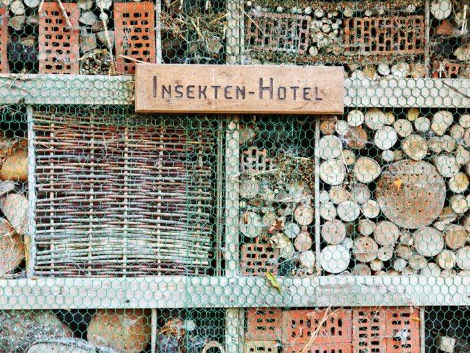 Insektenhotel anlegen