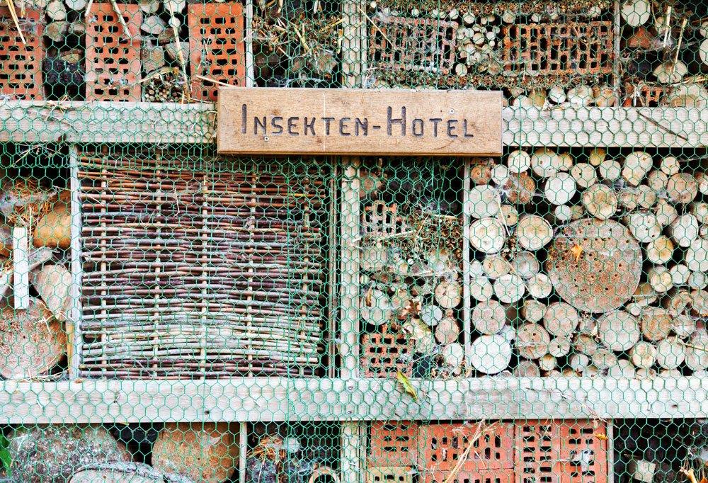 das insektenhotel aufbau und einrichtung. Black Bedroom Furniture Sets. Home Design Ideas