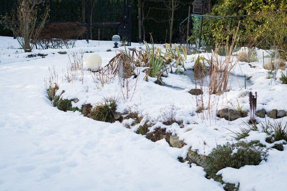 Garten Im Winter garten im winter archive gartentipps