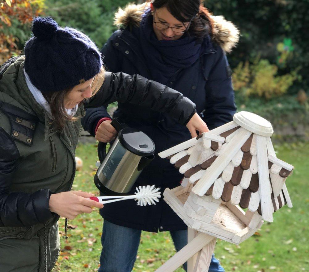 Die Besten Tipps Um Teppiche Sauber Zu Halten: Vogelfutterplätze Schnell Und Einfach Sauber Halten