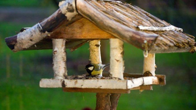 Vogelhaus Futtersäule