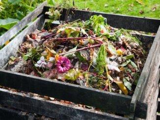 Komposterde Vorteile
