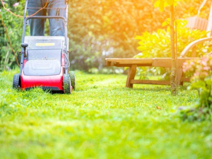 Rasenpflege März