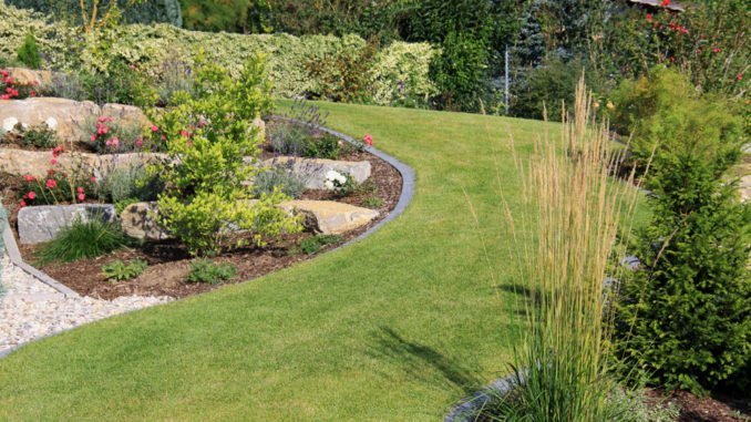 Steingarten anlegen diese tipps tricks unbedingt beachten - Steingarten ideen bilder ...