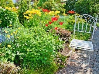 Gartenideen Frühling