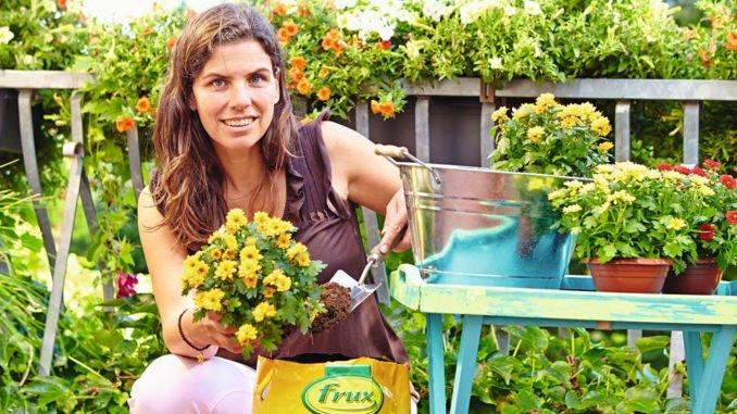 alte Blumenerde verwenden