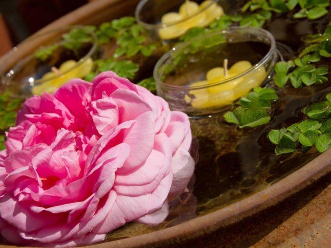 Miniteich Blumenkübel