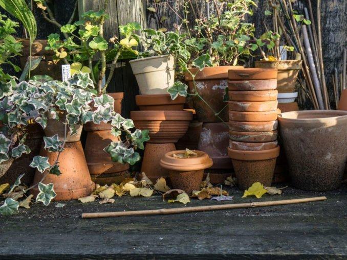 Terracotta Blumentöpfe reinigen