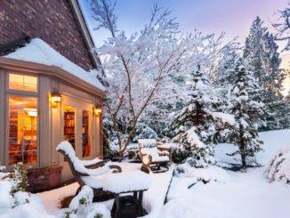 Schneebruch vorbeugen