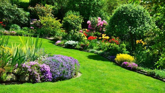 Dünger Garten Unterschiede