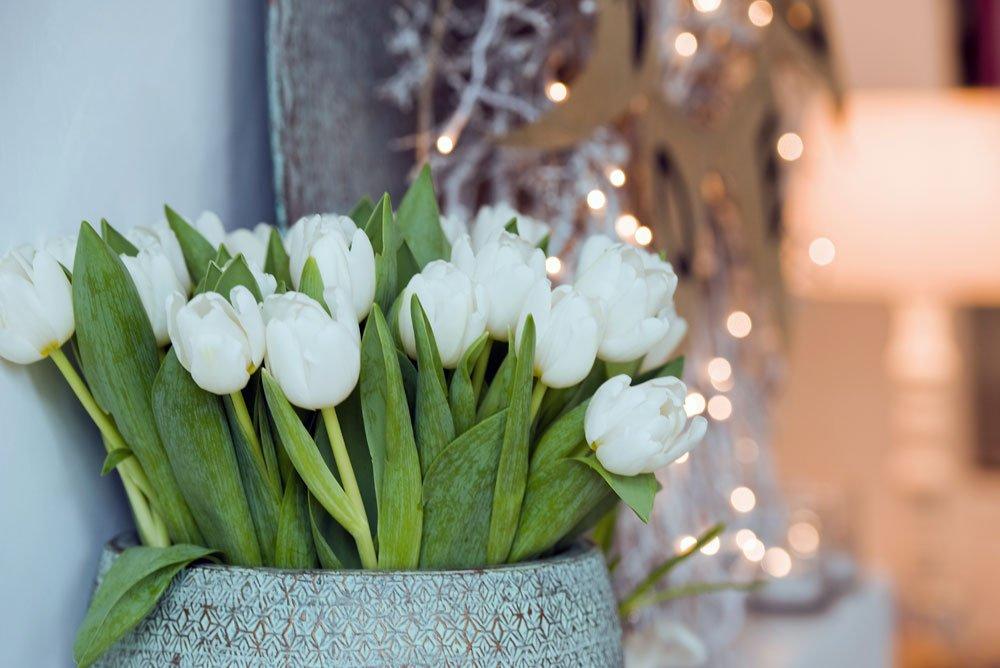 Tulpen Deko Weihnachten