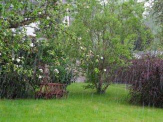 Garten regenfest machen