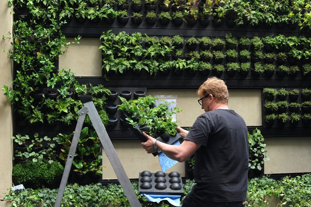 Vertikal pflanzen Hinterhof