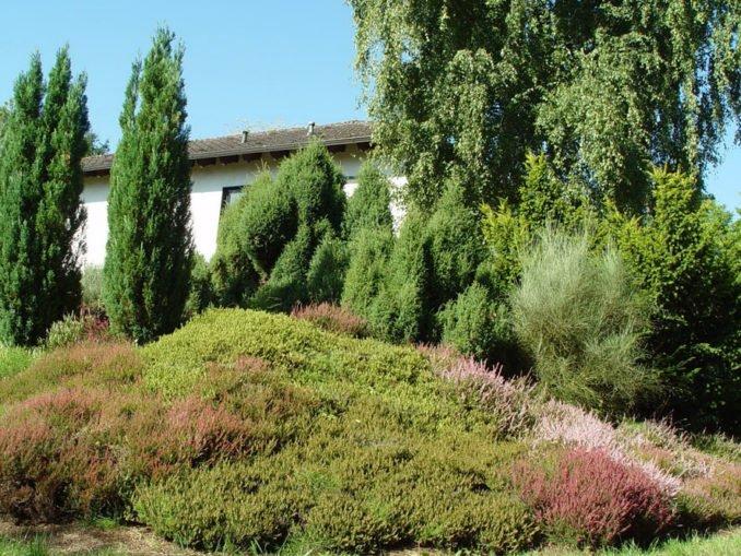 Heidegarten anlegen