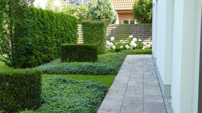 Gartengestaltung mit Bodendeckern