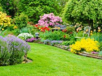 Garten gelb