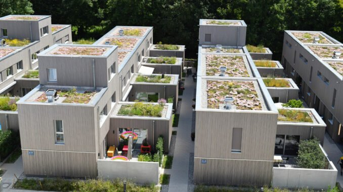 Klimawandel Pflanzen